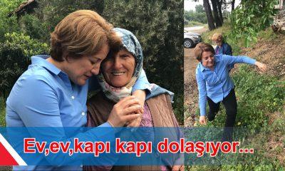 MERAL MENGİ KAPI,KAPI DOLAŞIYOR