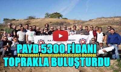 PAYD'TAN 5.300 AĞAÇ