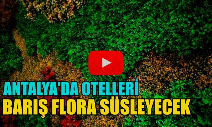 OTELLERİ BARIŞ FLORA SÜSLEYECEK!