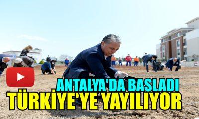 Muratpaşa'da tohumlar toprakla buluştu