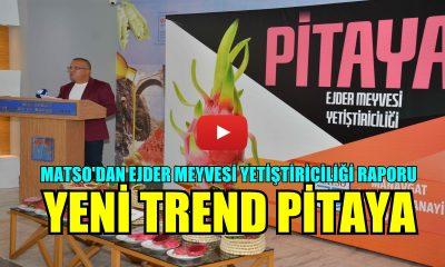 Manavgat'ta Yeni Trend Pitaya